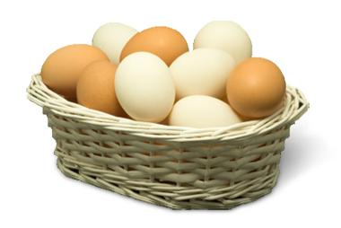 Sobre huevos, cestas y Google