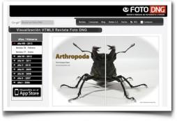 Arthropoda - Foto DNG