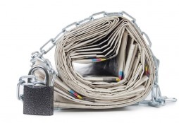 newspapers chain-Vladimir Voronin