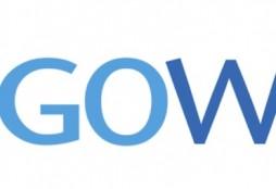 Gowex crisis