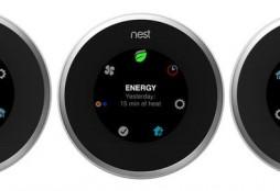 Nest (new)