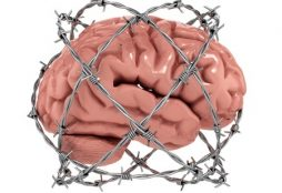 brain barb wire