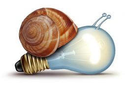 28608028 - low energy and slow creative concept as a light bulb or lightbulb with a snail shell as an innovation crisis metaphor for creativity issues facing new ideas to innovate on a white background