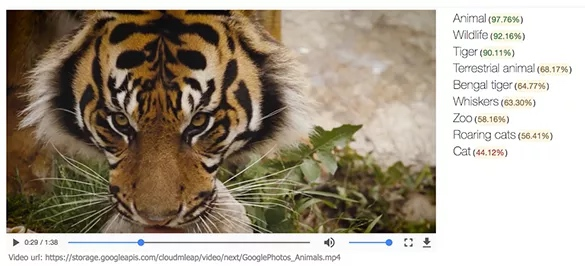 Image recognition in video (Google)