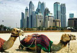 Dubai (IMAGE: E. Dans)