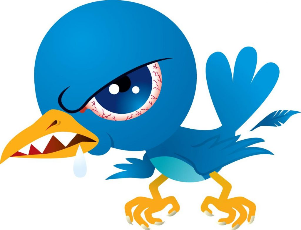 Angry Twitter bird (IMAGE CREDIT: Unknown)
