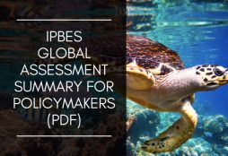 Intergovernmental Science-Policy Platform on Biodiversity and Ecosystem Services (IPBES)