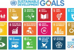 Sustainable Development Goals (IMAGE: United Nations)