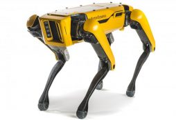 IMAGE: Spot - Boston Dynamics