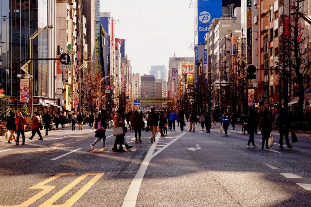 IMAGE: T. Watanabe - Pixabay