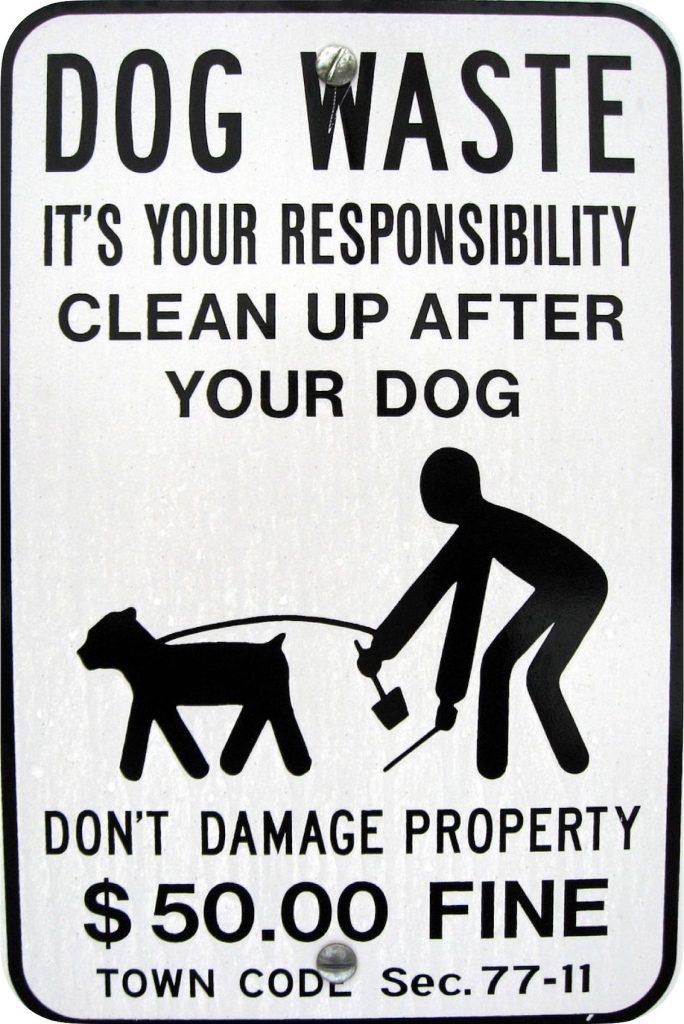 IMAGE: Dog waste - DASonnenfeld (CC BY SA)