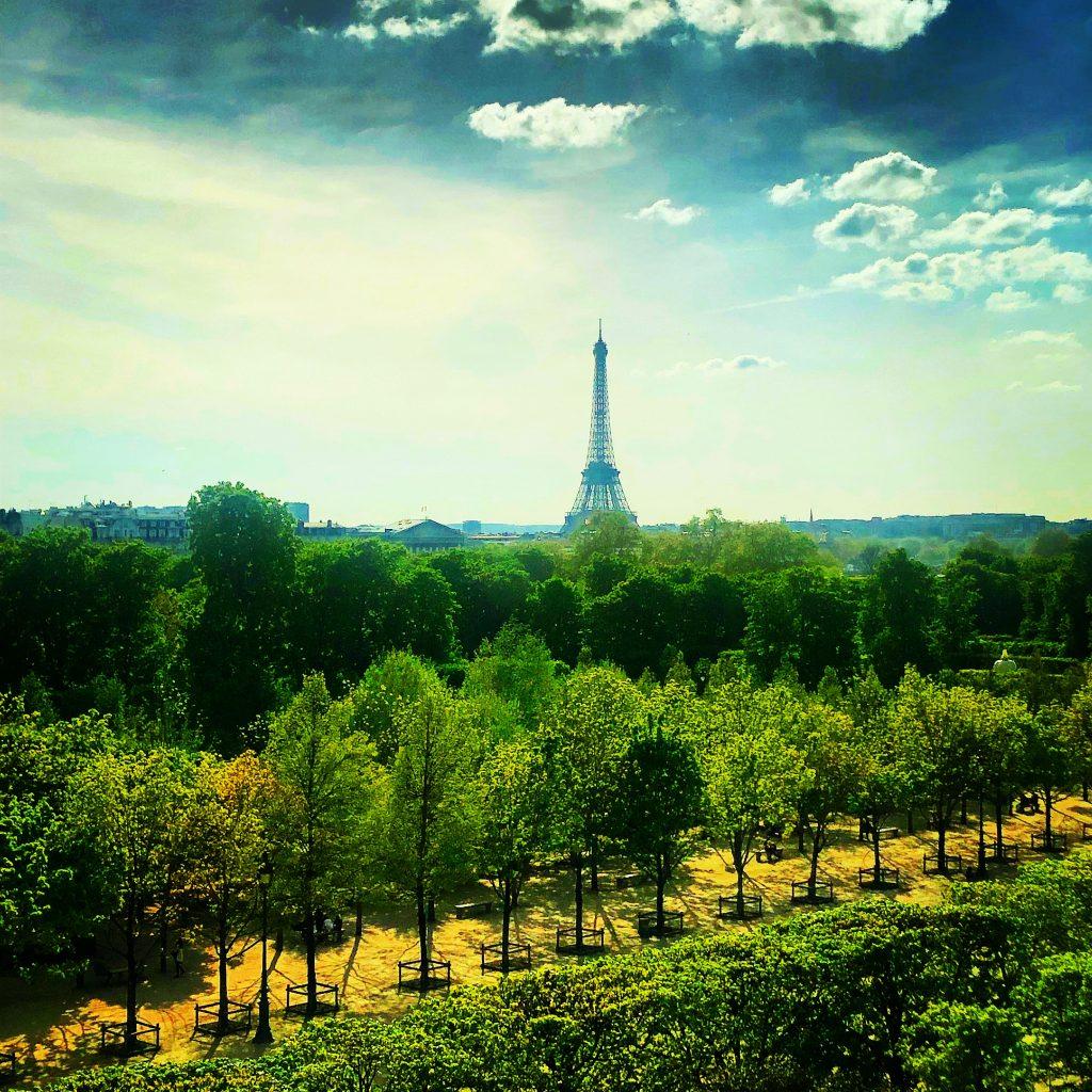 IMAGE: Paris from Hotel Brighton (E. Dans)